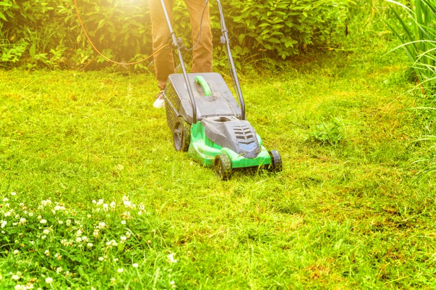 large and cheap walk behind mower